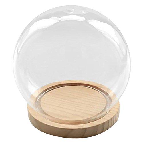 SODIAL Campana de Cristal Decorativa con Piso de Madera, contenedor de Vidrio Transparente Micro-Paisaje Jardin DIY Decoracion de contenedor terrario - Bola, 15x16cm