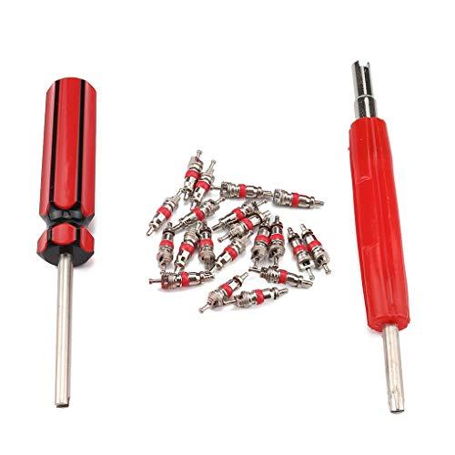 Topker 20PCS / Set Ventileinsätze + Dual Single Head-Ventileinsatz-Remover-Auto-Motorrad-Fahrrad-Reifen-Reparatur-Werkzeug