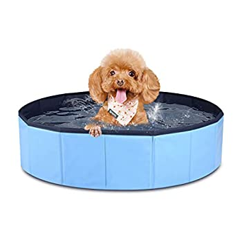 MorTime Foldable Dog Pool Portable Pet Bath Tub Large Indoor & Outdoor Collapsible Bathing Tub for Dogs and Cats  S 31  x 8