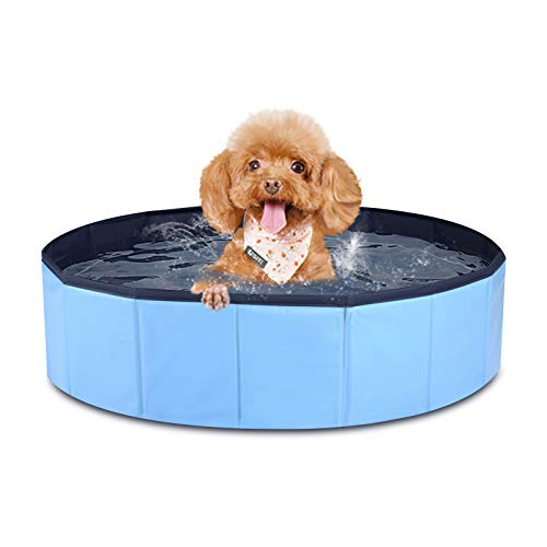 """MorTime Foldable Dog Pool Portable Pet Bath Tub Large Indoor & Outdoor Collapsible Bathing Tub for Dogs and Cats (S, 31"""" x 8"""")"""
