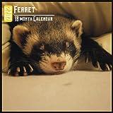 Ferret Calendar 2022: 18 Month Calendar Ferret, Square Calendar 2022, Cute Gift Idea For Ferret Lovers Women & Men, Size 8.5 x 8.5 Inch Monthly