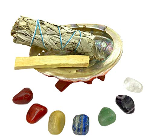 Chakra Stone Set with 7 Crystals, Sage, Abalone Shell, Wood Stand, Cage Pendant Spiritual Healing Crystal, Smudge Gift Kit