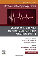 Advances in Cardiac Mapping and Catheter Ablation: Part II, An Issue of Cardiac Electrophysiology Clinics (Volume 11-4) (The Clinics: Internal Medicine, Volume 11-4)