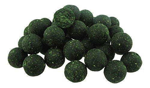 CommonBaits HIGH ACTIVE MUSCHEL & KRILL mit GLM 1Kg Boilies 20mm