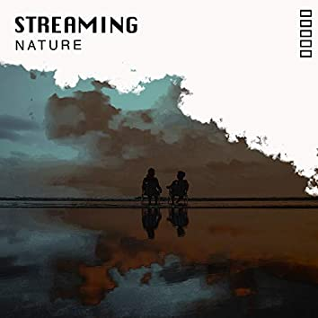 Streaming Nature, Vol. 15