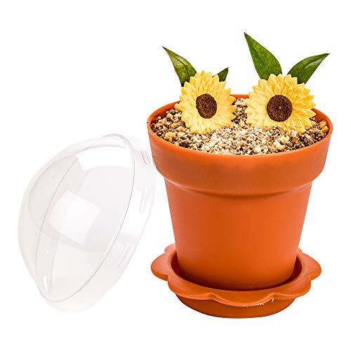 6 oz Terracotta Plastic Mini Flower Pot Cup - with Lid - 3' x 3' x 3' - 100 count box - Restaurantware