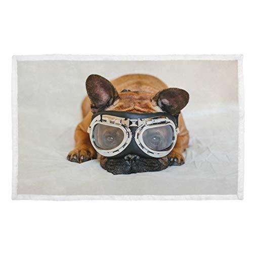 Manta para perro con impresión cálida, funda de cama divertida, color marrón, gafas de aviador, para viajes, mascotas, estilo de vida