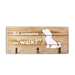 "Wooden leash holder sign with 3 hooks and the words ""did someone say ""walk"" printed on the front."