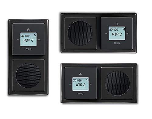 Busch Jäger Unterputz UP Digitalradio 8215 U (8215U) Anthrazit Komplett-Set // Radioeinheit + Lautsprecher + 2-fach Rahmen 1722-181K + Abdeckungen