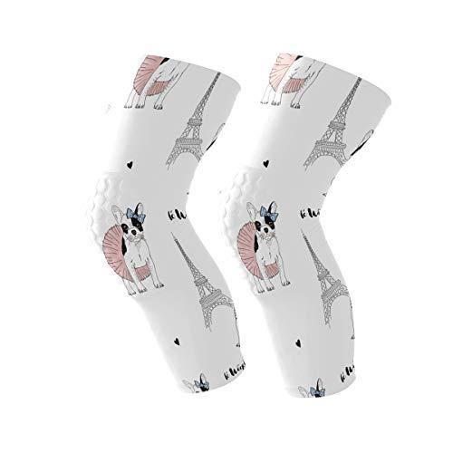 LEVEIS French Bulldog Paris Knee Support Brace Sleeve Non Slip Lite Compression Fit Squats Workouts for Men & Women