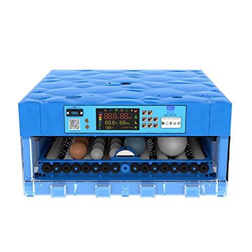LP-LLL Eierinkubator 0-64 Kleine Geflügel-Ovulatoren Eier Automatische Drehung Brutklappe Temperaturregelung Hühnerinkubator