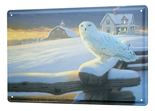 LEotiE SINCE 2004 Blechschild Dekoschild Küche Garage Retro Schneeeule Winter Metall Wand Deko Schild 20X30 cm
