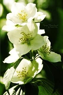 Syringa Flowers Journal: (Blank Book, Notebook, Diary)