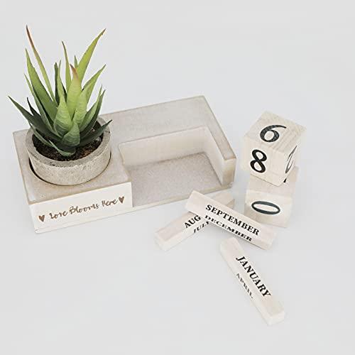 Rustic Cubes Calendars, Perpetual Wood Desktop Calendar with Artificial Plant for Women Office Desk...