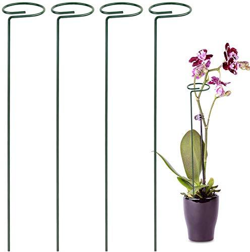 Hohe Stützreifen, Blumenstütze Und Pflanzenstütze, Kleine Pfingstrose, Stützstäbe Mit Reifen, Rankhilfe Rankstäbe Pflanzstäbe(Grün/40CM)