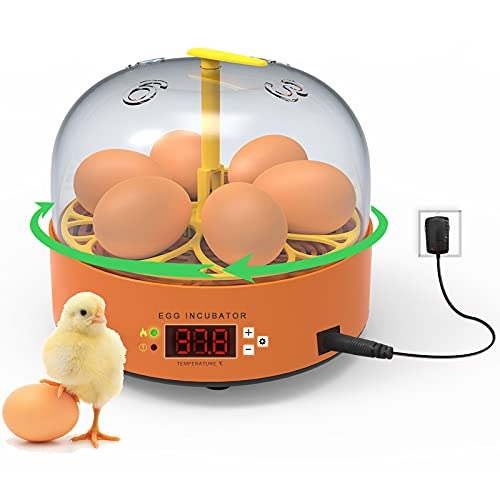 Egg Incubator, 6 Eggs Hatcher Poultry Hatching Machine with Automatic Egg Turning and Temperature Control Chicken Brooder Incubators for Hatching Chicken Duck Goose Quail Parrot Birds Eggs