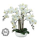 Zoom IMG-1 linea decorativa orchidea bianca artificiale