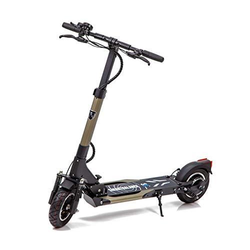 Smart Balance Elektroroller SB7 Dual Power Premium Marke, Höchstgeschwindigkeit 25 km/h, Autonomie 50 km, USB-Anschluss