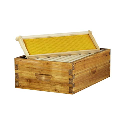 Hoover Hives 8 Frame Langstroth Medium Super Box Dipped in 100% Beeswax Includes Wooden Frames & Waxed Foundations