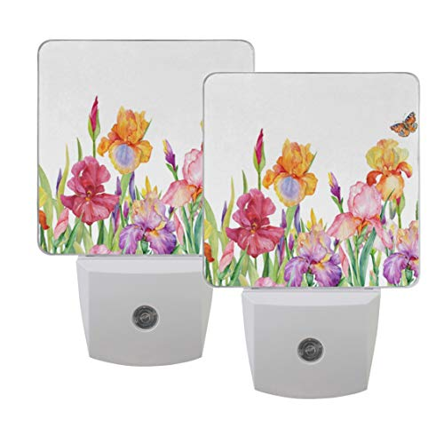 Naanle Set of 2 Field of Iris Flowers with Butterfly Beautiful Watercolor Colorful Floral Background Spring Design Auto Sensor LED Dusk to Dawn Night Light Plug in Indoor for Adults