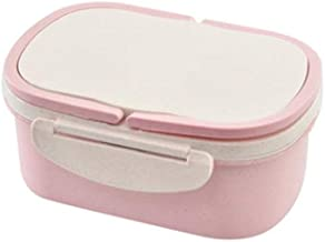 WZHZJ Portable Compartment Double-Layer Portable Insulated Lunch Box Fruit Crisper Food Container Storage Box (Color : B)