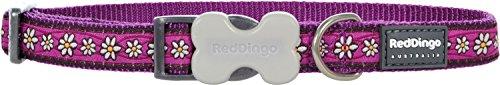Red Dingo Hundehalsband, Gemustert, GrößeM, 2x30–47cm, Violett mit Gänseblümchen