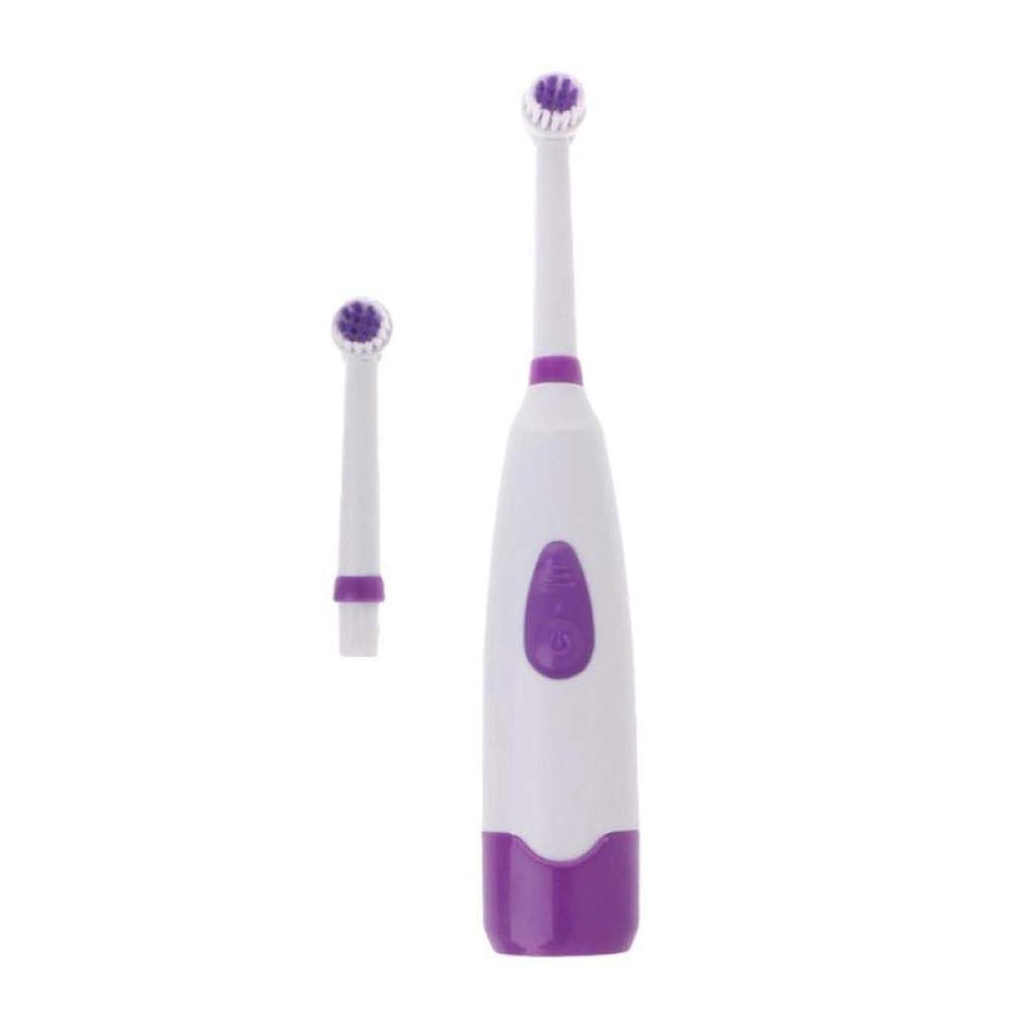 自動電動歯ブラシ回転式超音波歯ブラシ交換ヘッド付きの口腔清掃用歯ブラシ、紫