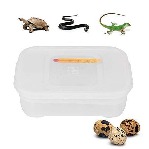 Incubadora de Huevos de Reptiles, incubadora fácil de Limpiar, Duradera e irrompible, Adecuada para incubar Reptiles más pequeños