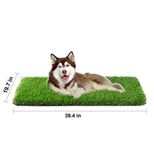 Grass Dog Pad