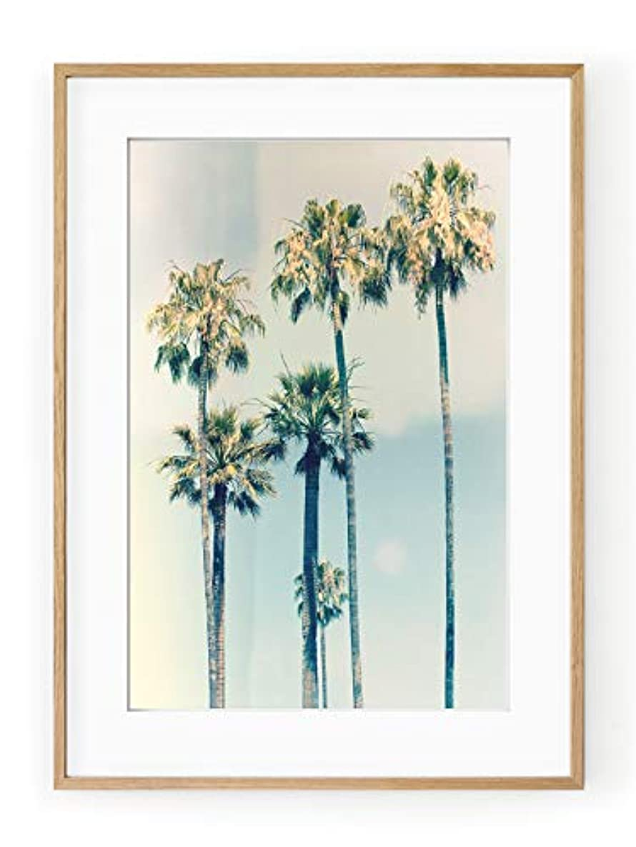 California Palm Trees, White Varnished Wood Frame, with Mount, Multicolored, 30x40