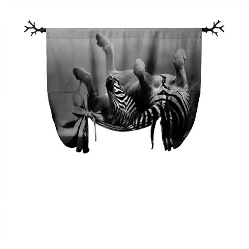 LanQiao Africa Thermal Insulation Blackout Roman Curtain Zebra Rolling in The Dust Artistic Savage Animal Mammal Activity Eco Photo Absorb Noise W52 xL84 Black and White