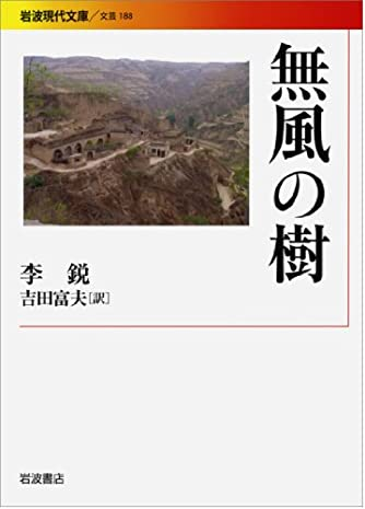 無風の樹 (岩波現代文庫)