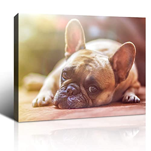 Purple Verbena Art Bulldog on the Ground Picture Canvas Print Lovely Cute Pet Dog Photo Painting Canvas Home Wall Art Decoration for Living Room Bedroom Wall Décor Artwork,Framed 12x16 inches