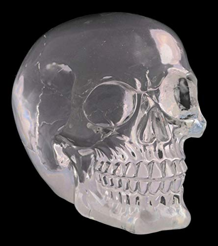 Figuren Shop GmbH Gothic Totenkopf - transparent, massiv, schwer | Fantasy Skull, Totenschädel, Kopf-Skulptur, Deko-Figur, Deko-Artikel, H 12 cm