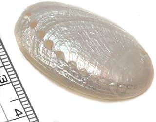 【貝殻パーツ】ナガレコパール