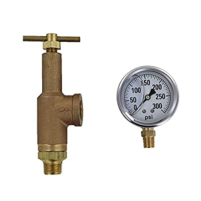 TeeJet 6815-3/4-HSS-300 Brass Pressure Regulator with 300 PSI Pressure Gauge (Bundle, 2 Items) by TeeJet
