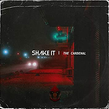 Shake It (Extended Version)