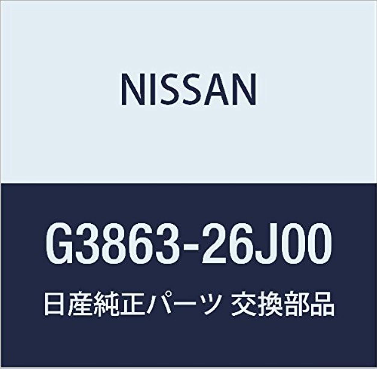 温かい肥沃な迷信NISSAN(ニッサン)日産純正部品フック スキ- ラック G3863-26J00