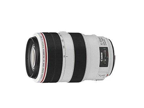 Canon Obiettivo, EF 70-300 mm f/4-5.6L IS USM