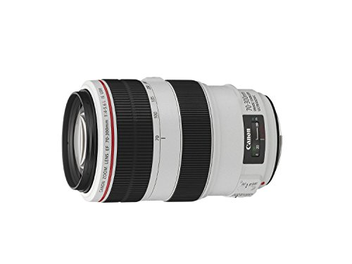 キヤノン『EF70-300mm F4-5.6L IS USM』