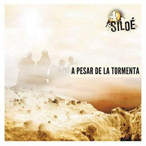 Ministerio de Música Siloé Colombia