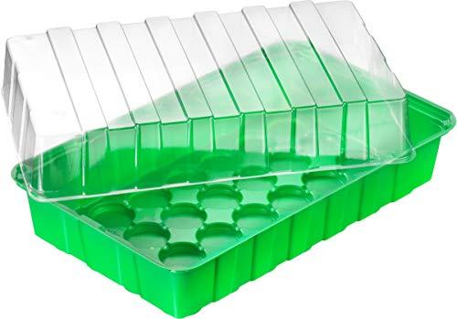 Connex Zimmer-Gewächshaus - 36 x 22 x 13 cm - für bis zu 18 Pflanzen - mit Vertiefungen & Wasserrinnen / Anzuchthaus für Samen & Setzlinge / Zimmer-Treibhaus / FLOR79020