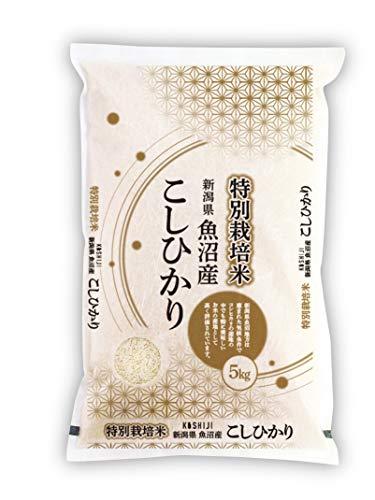 【特別栽培米】魚沼産コシヒカリ 5kg 新潟県産 新米