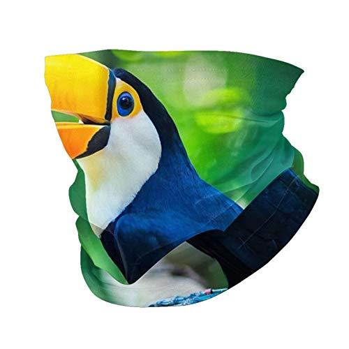 Variety Head Scarf Fashion Face Mask Exotic Toucan Bird In Natural Setting, Foz Do Iguacu, Brazil Sun-Proof Fashion Bandana Headwear Face towel for Men and Women