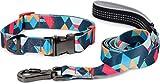 Puccybell Collar y Correa para Perros de Nylon (1,5 m) en un Conjunto, diseño geométrico, para Perros pequeños, medianos y Grandes HLS008 (L, Azul Oscuro Colorido)
