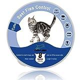 EXPAWLORER Collar Impermeable para pulgas y garrapatas para Gatos, protección de 8 Meses, el Mejor Tratamiento para Control de pulgas para Gatos y Gatitos