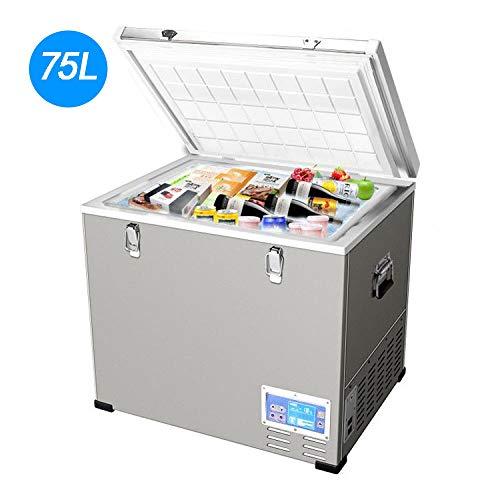 LIJING Congelador Frigorífico Pequeño,Mudo Control Temperatura Ajustable Nevera De Bebidas Energía Congelador12V24V42V220V-Bajo...