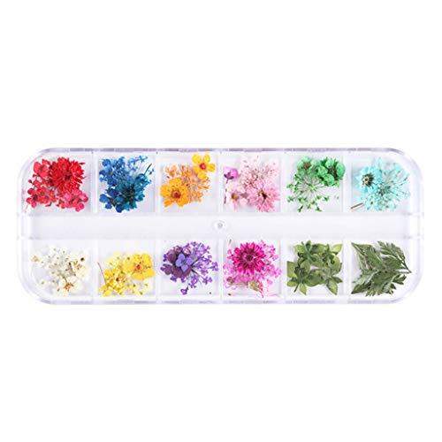 Henan 12 cuadrícula/caja de cristal epoxi relleno flores secas hechas a mano, moldes de silicona de resina UV, material de relleno de decoración accesorios