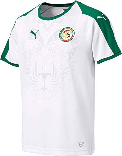 PUMA Mens Senegal Licensed Replica Jersey 2018-2019, XX-Large, Home