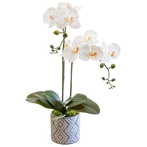 Orquidea Artificial, Altura 65 cm, Phalaenopsis, Maceta de Cerámica, Ideal para Decoración de Hogar, Tacto Natural (Orquídea 5)